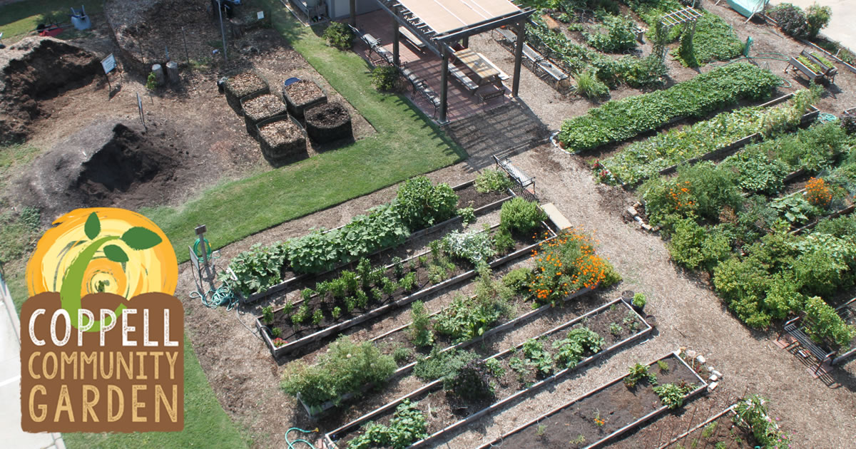 Coppell community garden classes and events in coppell for Community garden designs